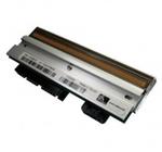 Zebra Печатающая головка 203dpi для Z4M Plus G79056-1M