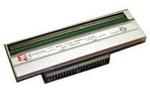 Zebra Печатающая головка 300dpi, для ZT420 P1058930-013